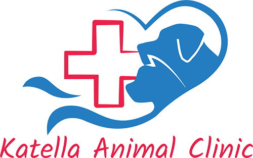 Katella Animal Clinic